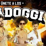 Promoción Alfa Doggis: Ingresa el código de tu boleta y gana 500 lucas semanales en alfadoggis.cl