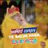 Redcompra regala 240 entradas al Lollapalooza 2019